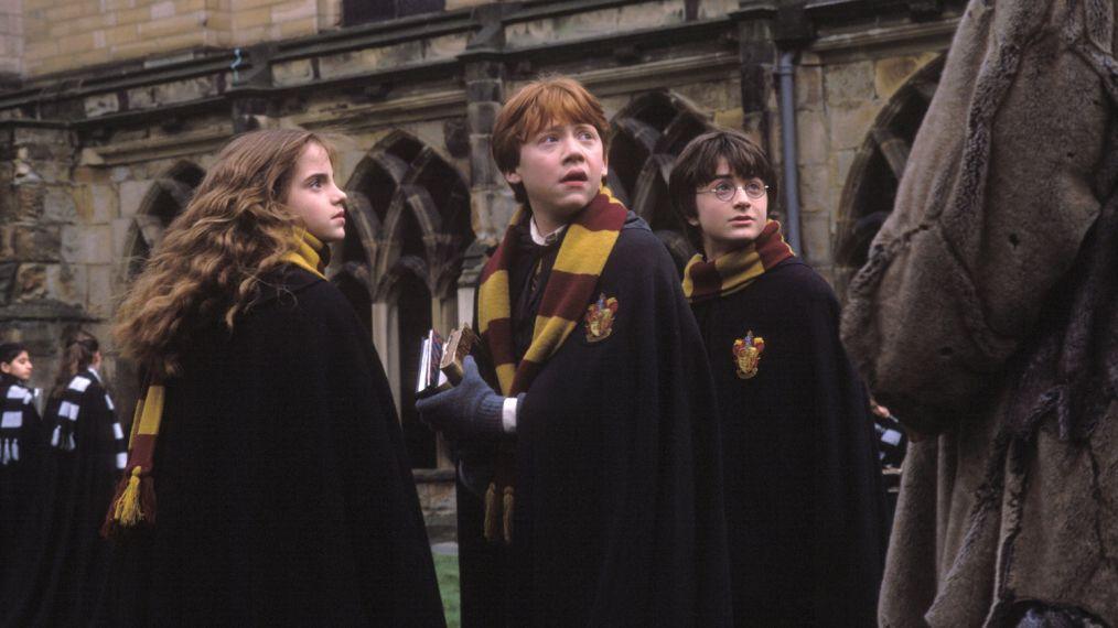 艾瑪華森獻上聖誕禮!IG分享《哈利波特》演員歡樂合照 粉絲一看卻問:哈利呢?