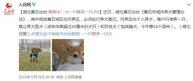 北京實施「禁狗令」高35公分以上全面撲殺 網爆:飼主親手打死愛犬...