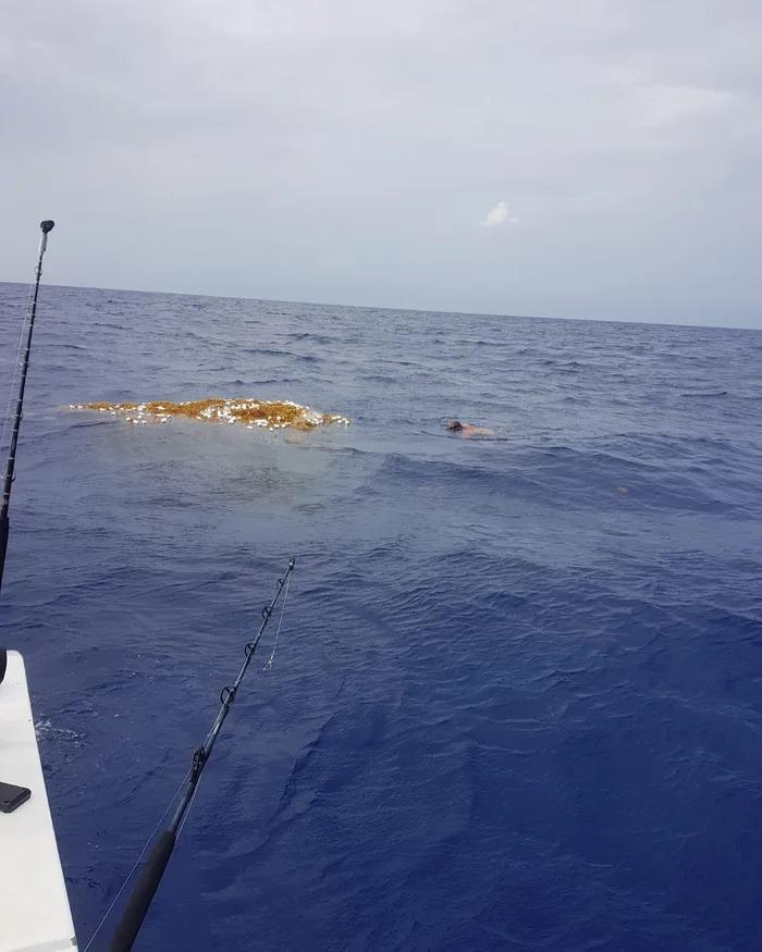 海面驚現「鬼魂漁網」畫面超詭異 他游近一看…竟有「上百隻鯊魚」被困到窒息!