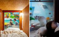 貓奴必朝聖!大阪貓咖啡廳「結合膠囊旅館」讓你在貓皇環繞下睡覺❤