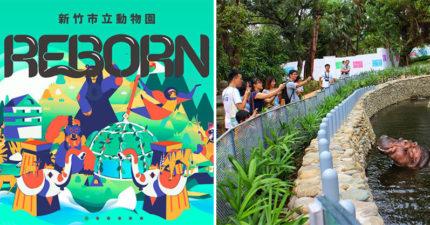 就在明天!新竹動物園重新開幕 主打「沒有籠子」打破傳統觀念