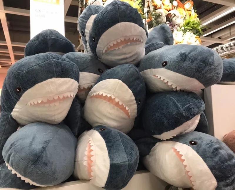 還在養IKEA鯊鯊?日本推進階版「一口咬人鯊」畫面太萌 一看價格網友全傻了