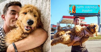 狂男買下「整面廣告」幫愛犬慶生!貼心訂製蛋糕「帶牠挑禮物」:反正沒女友