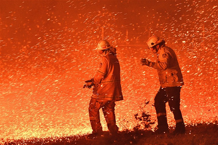 影/澳洲大火不停…喜鵲竟學會「消防警笛聲」片段被瘋傳 音調神還原驚呆全網
