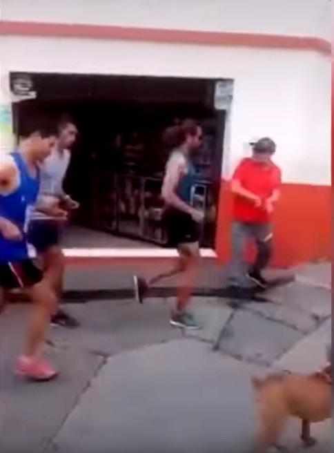 賽跑選手「一腳踢飛」路邊毛孩 贊助商「怒砍合約」他道歉:比賽時比較粗魯