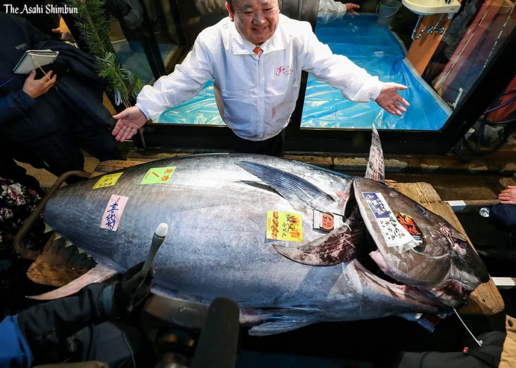 東京魚市拍賣「超巨黑鮪魚」重達276公斤 價格「狂飆1.9億」業者超驚喜