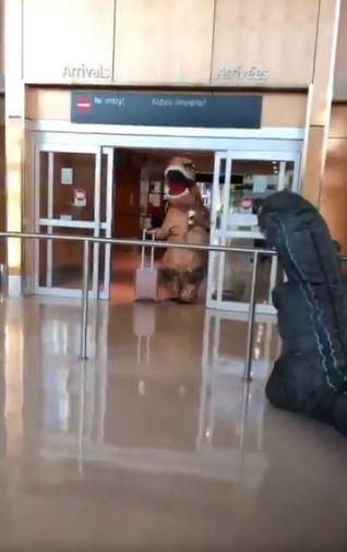 影/調皮孫「穿恐龍裝接機」惡整阿嬷 遭「霸氣反擊」網笑翻:阿嬷才是贏家!