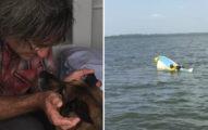忠犬在大海「游11小時找救兵」成功拯救沈船主人!