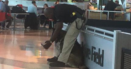俏皮警察「跟警犬自拍」快門按完還「秀給牠檢查」:這張拍得可以嗎?