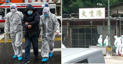 全球都淪陷「武漢肺炎」延燒到歐洲 中國再爆「高致病性」H5N1禽流感!
