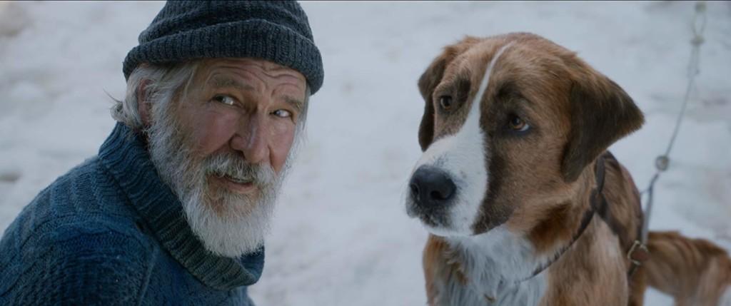 微雷影評/《極地守護犬》觀眾陪忠犬「探索自我」一起踏入未知旅程!