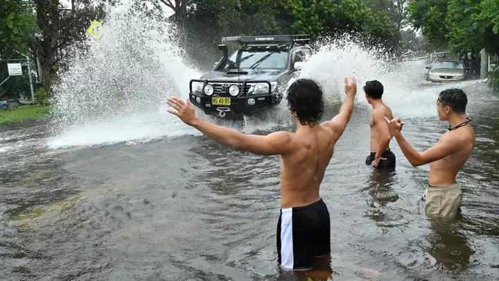 澳洲終於下雨了!袋鼠在水中「開心跳躍」 及時雨撲滅「30處大火」