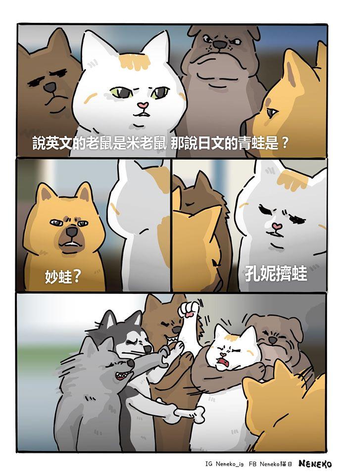《美隊2》梗圖大爆紅!網友創作超萌「貓皇版」 奴才:放開那隻貓