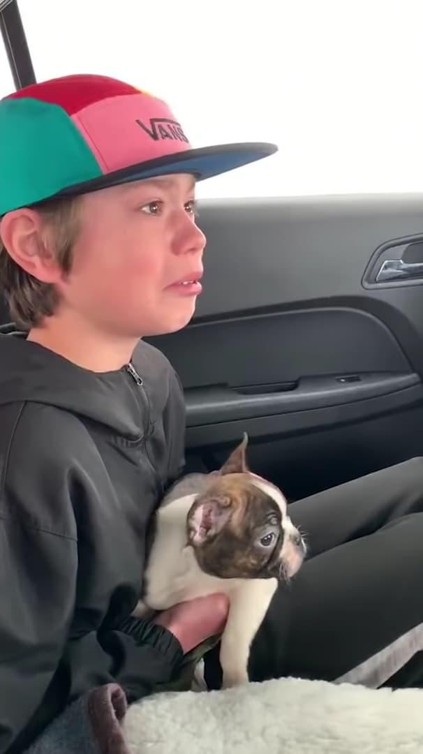 老爸病逝「送小狗」當兒子生日禮物 他淚崩:爸爸以前對狗過敏