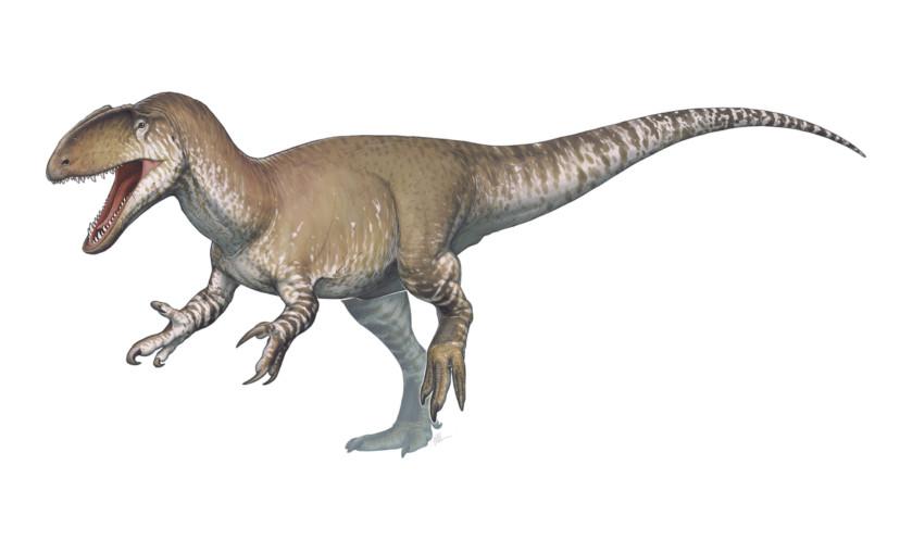 風暴颳出「超清晰恐龍腳印」!足跡藏「1.3億年」終於被發現