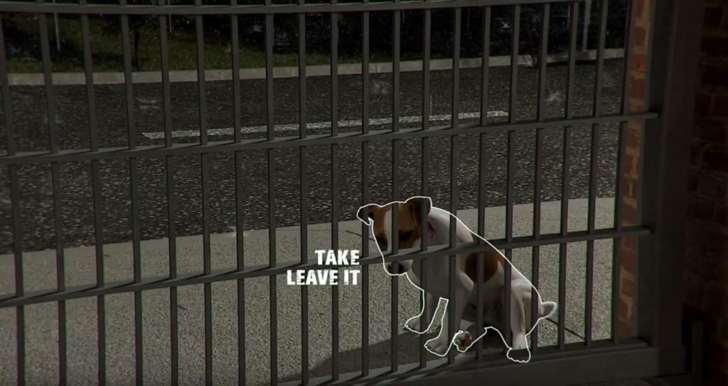 影/《動物收容所》讓你真實體驗「流浪→幸福」過程 比《十二夜》還感動!