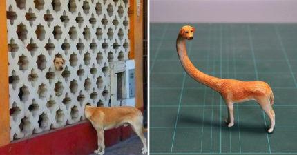 日本神人推「長頸犬」爆笑公仔 還原「牆後真相」網笑:太獵奇XD