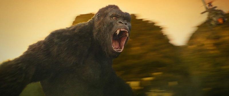 網瘋傳《金剛大戰哥吉拉》「角色設定照」 金剛「為了增強」竟變落腮鬍!