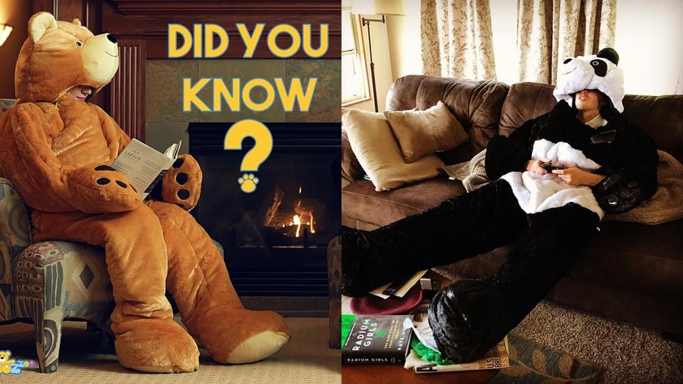 國外推保暖「巨型動物睡衣」造型超浮誇 穿上秒變北極熊!