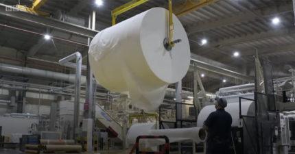 英國衛生紙之亂!工廠老闆秀出「超大捲衛生紙」安撫人心:放心真的夠用