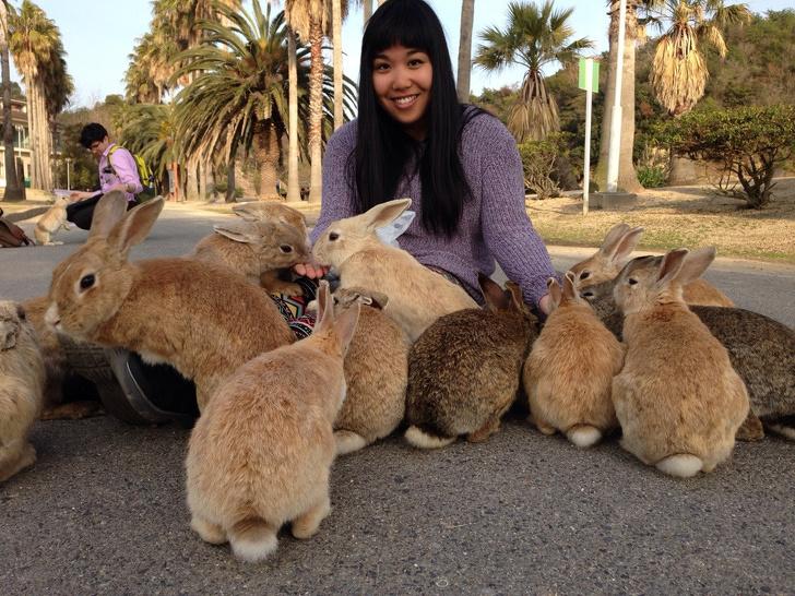 16個就算沒錢「還是想飛日本」的16個原因 世界上「最可愛動物」就在那裡!