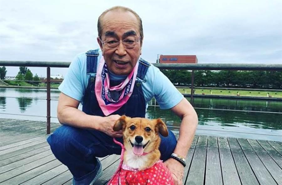 快訊/日本綜藝泰斗「志村健」武肺病逝 享壽70歲「確診一週」就離世!