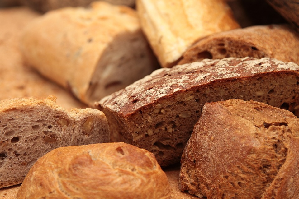 防室友偷吃神狗!主人出門就秒動作的「麵包守護者」4年保護百條麵包安危