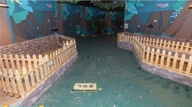中國重新開張各項設施 動物園「動物全餓死變乾屍」園長辯:跟氣候有關