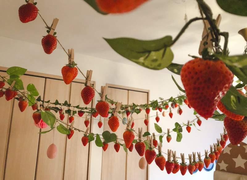 網分享「0感染風險採草莓」神技 雖然很ㄎㄧㄤ拍照卻意外夢幻!