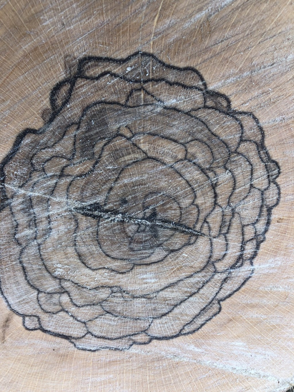 網友砍樹驚見「超唯美玫瑰花」藏在樹裡 他驚呆:難道是仙境標誌?