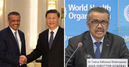譚德塞感謝「中國6億金援」狂讚防疫確實 「舔到上位」背景曝光