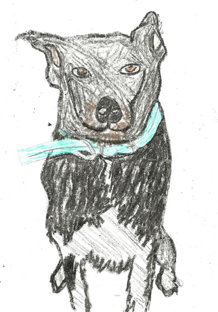 她花1300換「寵物畫像」超醜卻0負評 過來人羨慕:有塗色很好了!