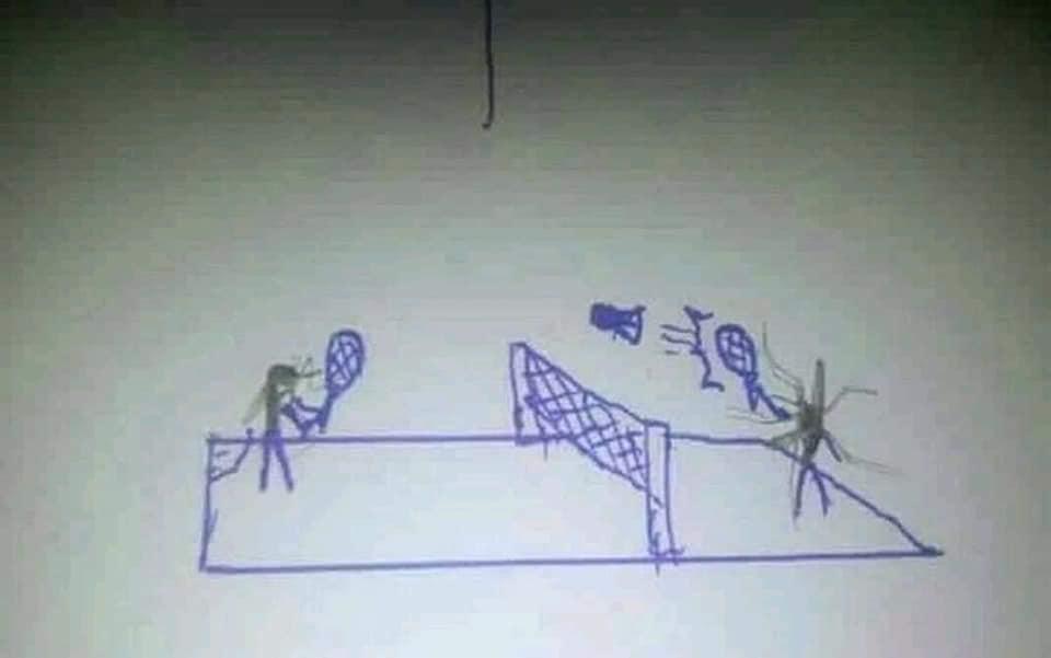 網友做出「蚊子標本貼畫」仔細看居然有滿滿劇情 網笑翻:這是嗑了多少XD