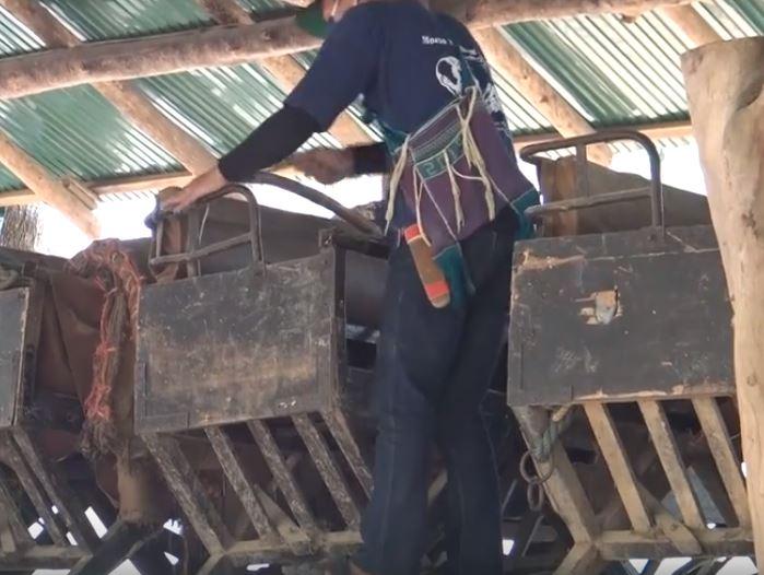 影/泰國大象營因疫情「解放78隻大象」不再給騎 解下座椅瞬間太感人!