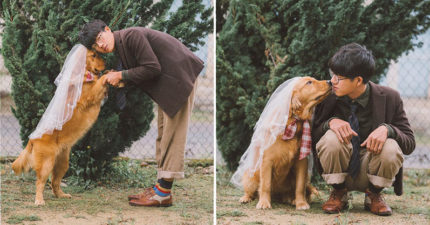 文青攝影師拍出「與阿金的甜蜜婚紗照」 單膝下跪那一幕美到想哭❤