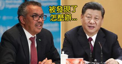 歐盟「被消失的報告」曝光!證實「中國放假消息」誣賴台灣