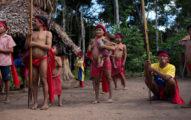 巴西原住民首例確診!武肺「入侵亞馬遜森林」威脅80萬人