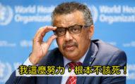譚德塞怒罵「台灣人罵我三個月」 外交部:立即道歉!