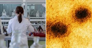 長庚醫院從確診病患體內「找到關鍵抗體」 團隊:有望預防「武肺病毒」入侵!