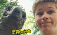 鱷魚先生兒子「神複製爸爸基因」 上傳「巨龜自拍照」:隔離的好夥伴