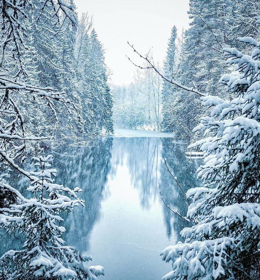 攝影師專拍「芬蘭原始森林」奇蹟美照 夢幻到像走進迷幻王國!