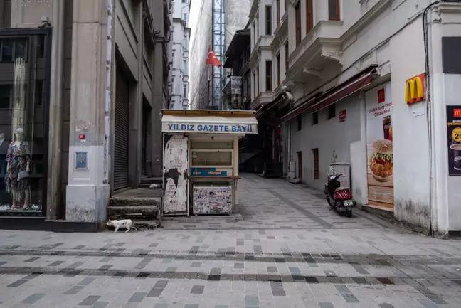 全國居家隔離!土耳其政府「街頭留食物給浪浪」怕牠們會餓到