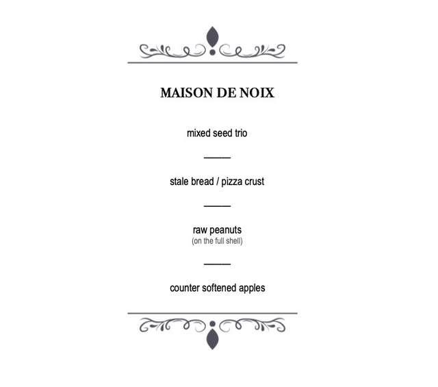 網友為松鼠打造「五星級咖啡廳」 連「專屬菜單」也精心設計!