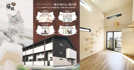 夢幻「貓奴公寓」內裝全為寵物設計 佛心價只有單身能租!
