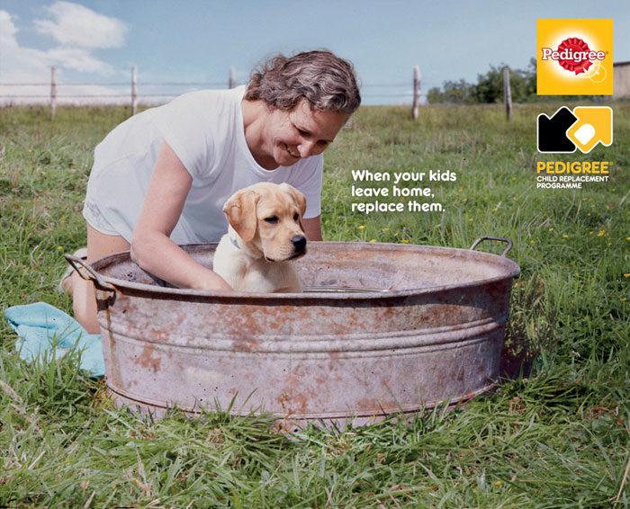 有毛小孩的最懂!養狗前vs.養狗後「如何徹底改變你」的超神廣告