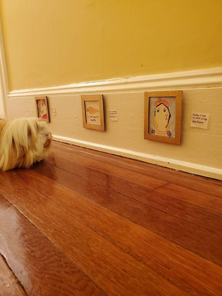 主人為天竺鼠打造「客製博物館」 毛孩「跟名畫大合照」超萌!