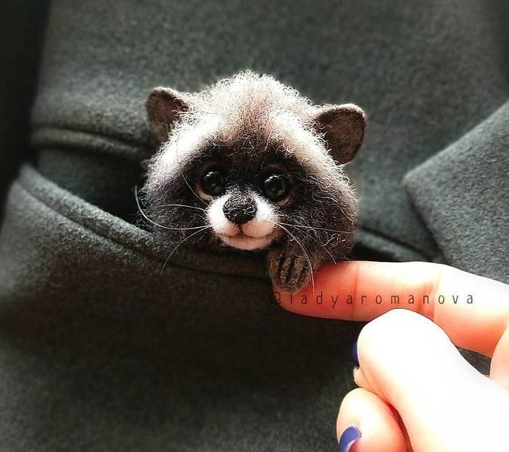 藝術家打造「比活的還可愛」動物公仔 「口袋貓咪」讓網融化❤