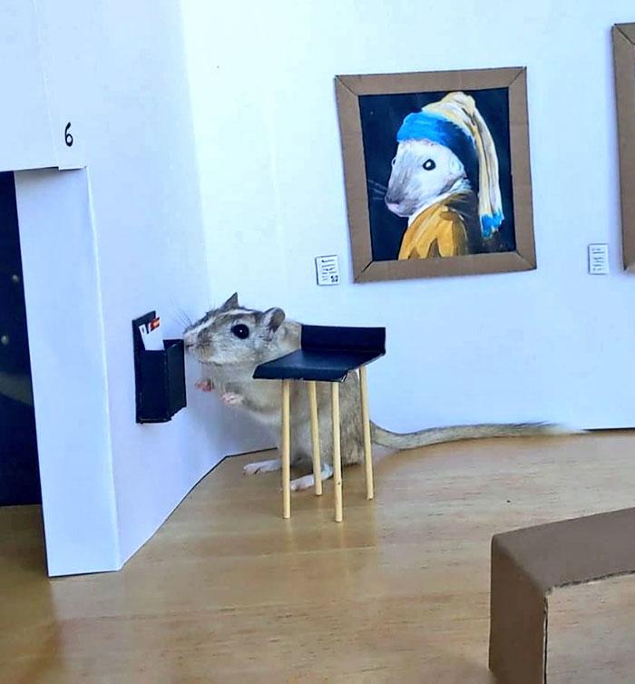 防疫期間細心打造出一座「專鼠美術館」迷你館長卻只想著椅子