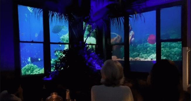 他把「整座水族館搬回家」當禮物 癡呆媽淚喊:永遠不想忘記!