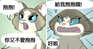 19張貓奴們的「崩潰日常」對貓咪好就是折磨自己!